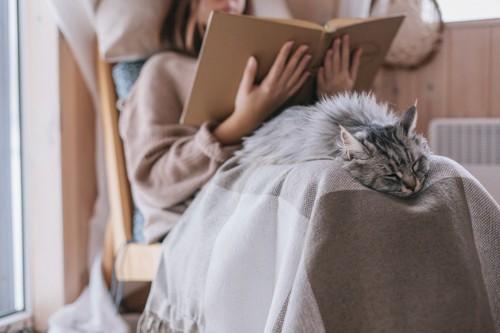 女性のヒザでリラックスする猫