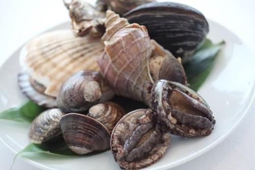 ハマグリやアワビ、サザエなど貝類