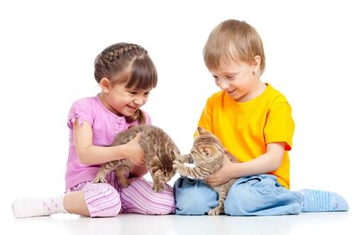 少年少女と猫