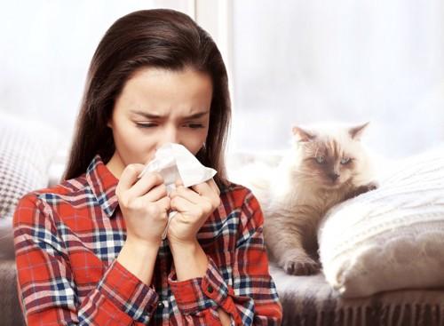 鼻をかむ女性と猫