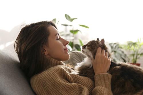 飼い主の胸の上に乗って撫でられている猫