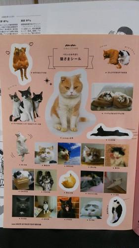 猫さまシール