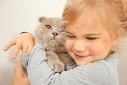 猫アレルギーの子供