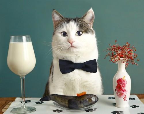 席に着く猫とテーブルの上のミルクと魚