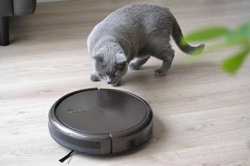 ロボット掃除機と猫