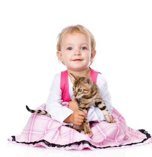 赤ちゃんとベンガル猫