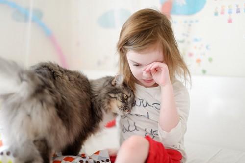 泣いてる子供と寄り添う猫