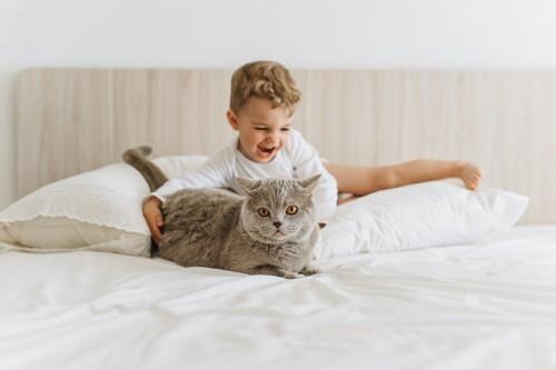 騒ぐ子供と猫