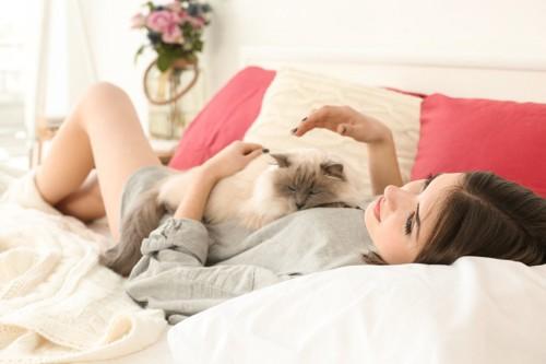 女性のお腹の上で寝る猫