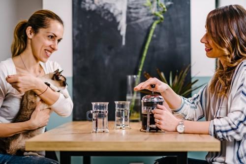 お茶をする人と猫