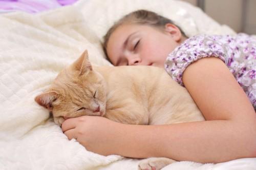 子どもと寝る猫