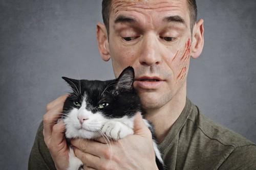 怒った表情の猫と傷だらけの男性
