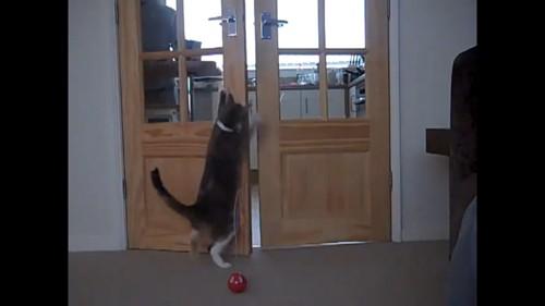 ドアに手をかける