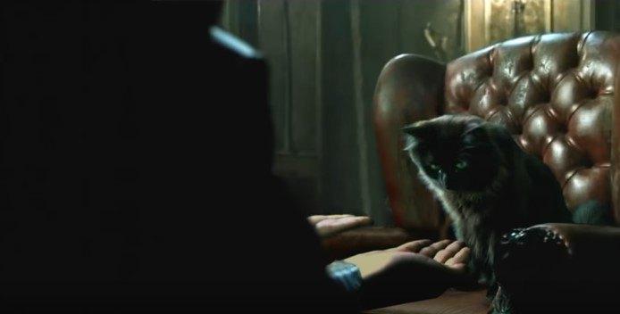 右手を見るアウル・キティ