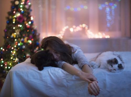 猫とともに眠る