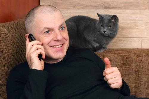 電話中の男性の顔のそばで座る猫