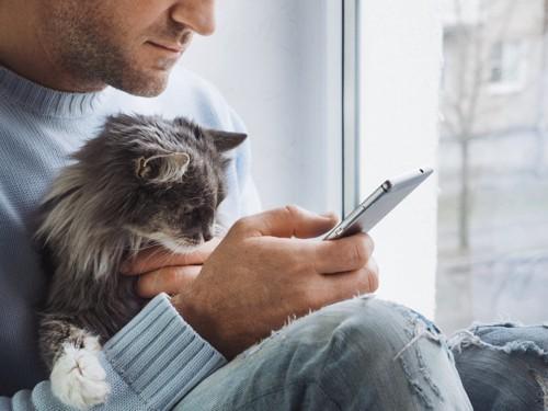 猫を抱いてスマホを見る人