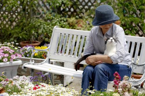 猫と花畑と人