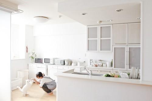 台所のそばで遊ぶ猫と女性