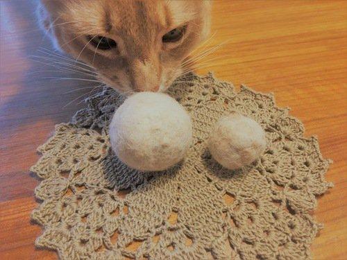 猫の毛ボールと猫