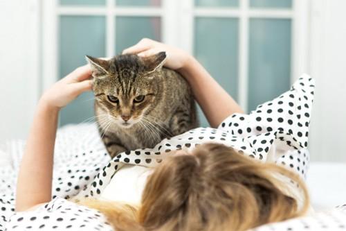 寝ている人の上に立つ猫
