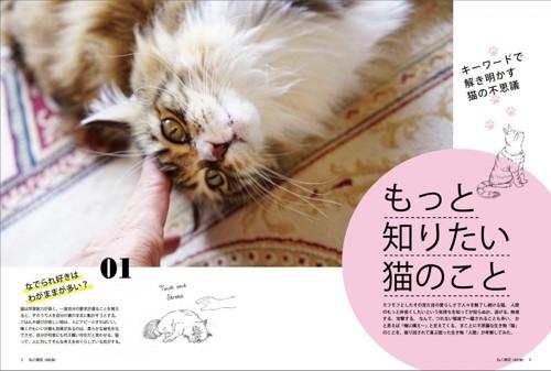 02_ねこ検定公式ガイド「もっと知りたい猫のこと」