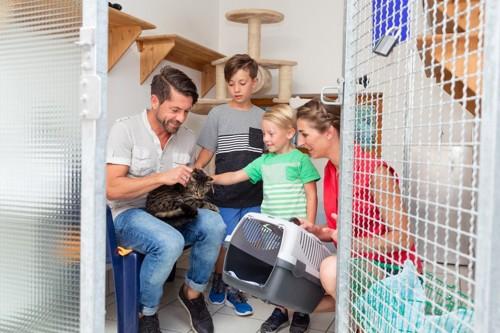 猫を迎えた家族