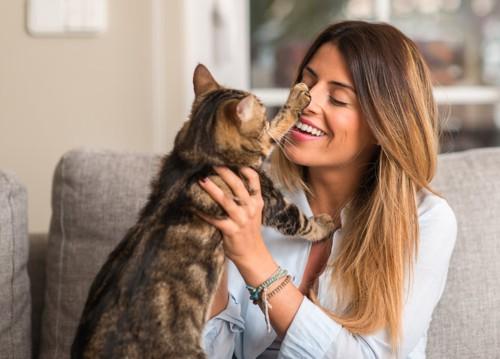 女性の顔に手を伸ばす猫