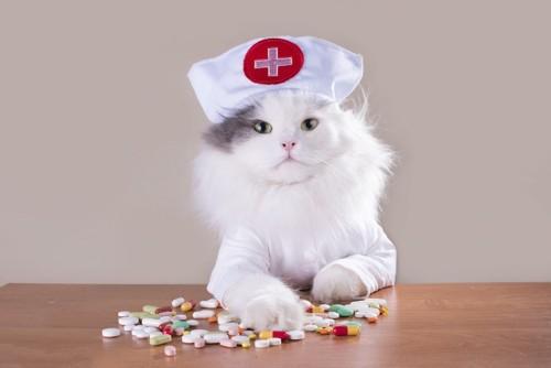 ナースの格好をしている猫と様々な薬