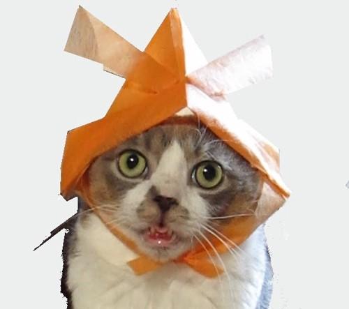 モデルになったオレンジ兜