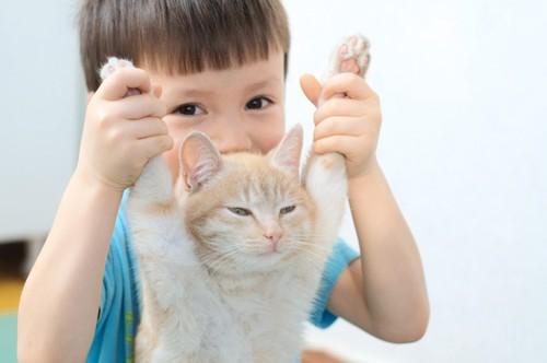 猫の両手をつかむ少年