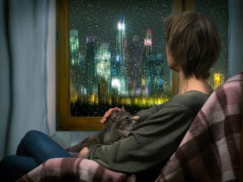 猫を膝に乗せて雨が降る窓の外を見る女性