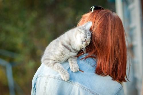 女性の肩に乗り甘える猫