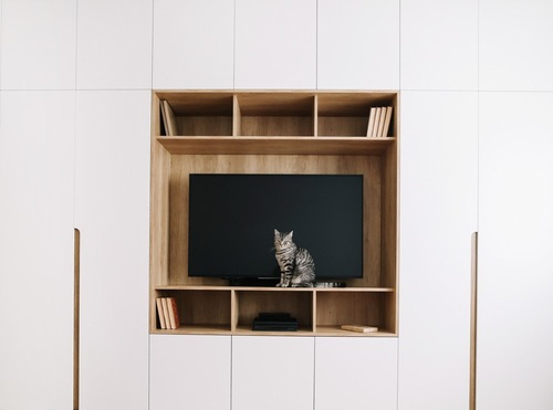 テレビの前に座る縞模様の猫