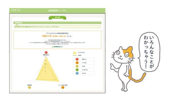 測定結果と猫