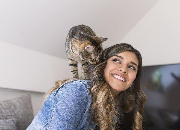 149201105 女性の方に乗る猫の写真