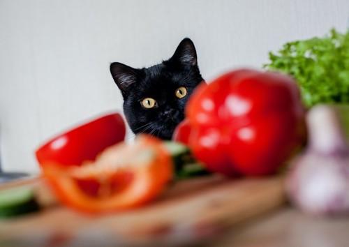 テーブルの上の野菜に興味を示す猫
