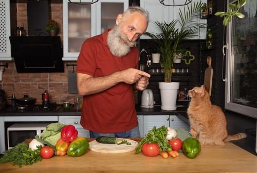 台所にいる男性と猫
