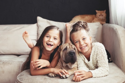 ソファーでくつろぐ二人の少女と犬と猫