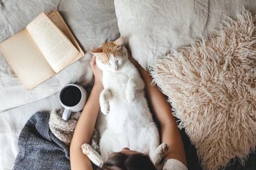 飼い主の上でリラックスしすぎな猫