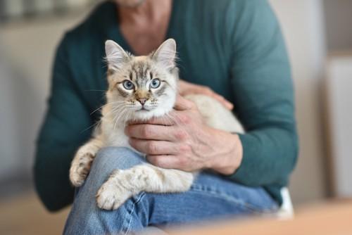 男性のひざに抱かれる猫