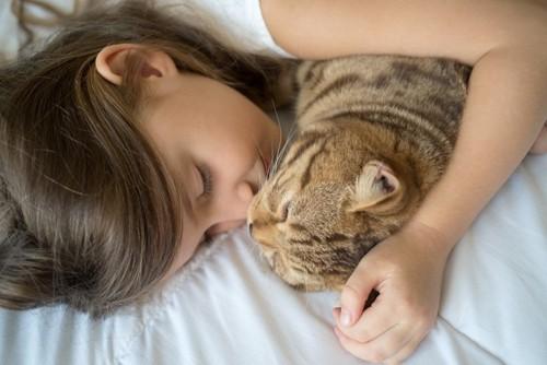 少女と布団に入る猫