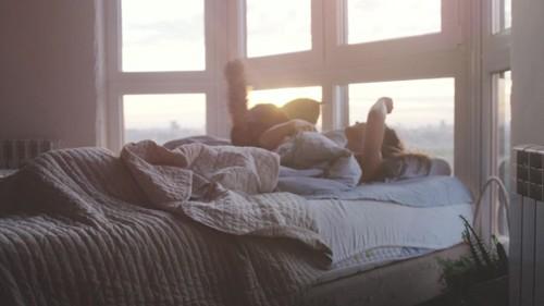ベッドの上に立つ猫と寝る人