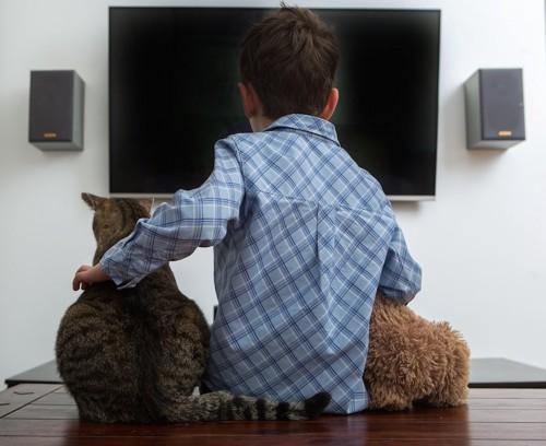 一緒にテレビを見る男の子と猫の後ろ姿