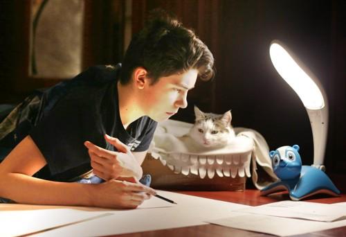 勉強する人を見る猫