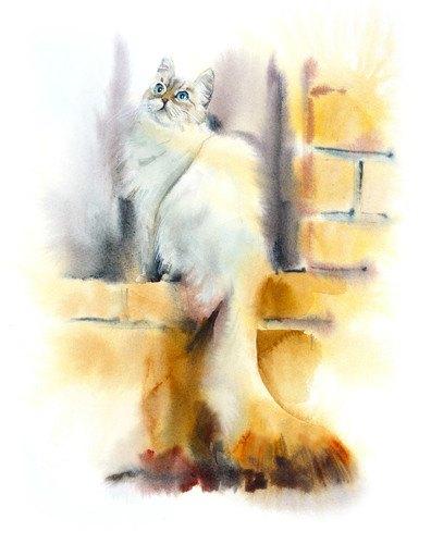 窓辺の猫のリアルなイラスト