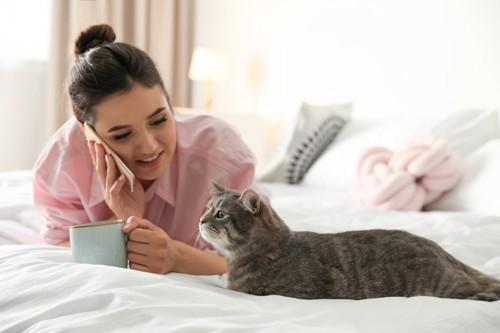 猫と話す人