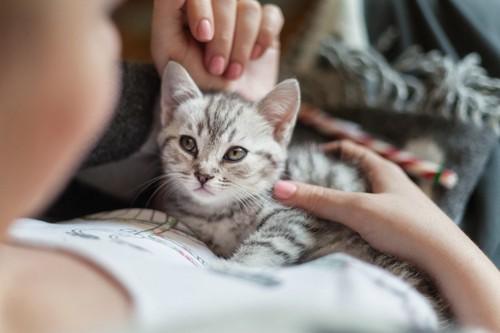 人にくっつく猫