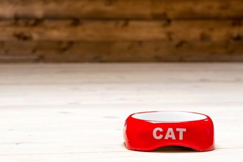 床の上に置かれた赤い猫用食器