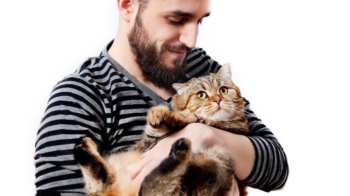 猫を抱く男
